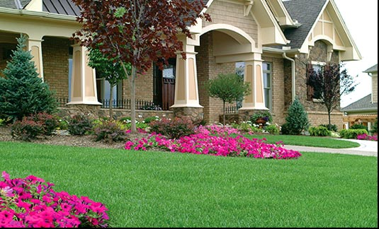 Tree, Shrub, & Landscaping Bed Fertilizing