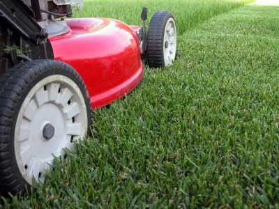 MOWING GRASS PATTERNS | Browse Patterns